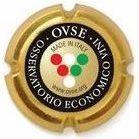 Osservatorio OVSE – Ceves